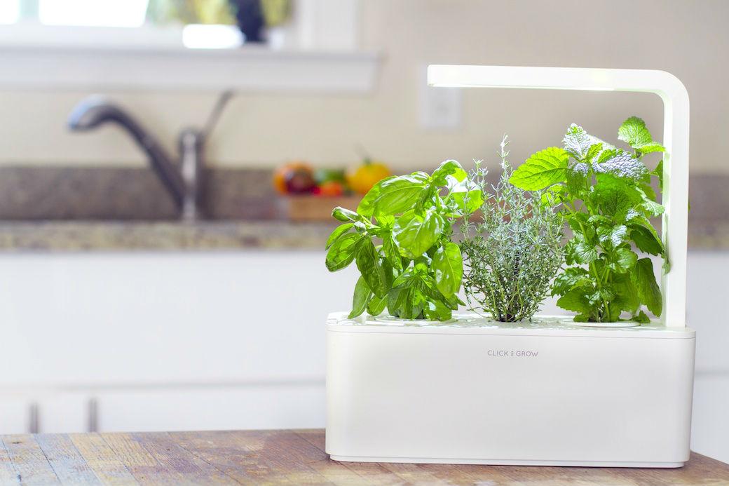 Гаджеты для кухни, умный сад