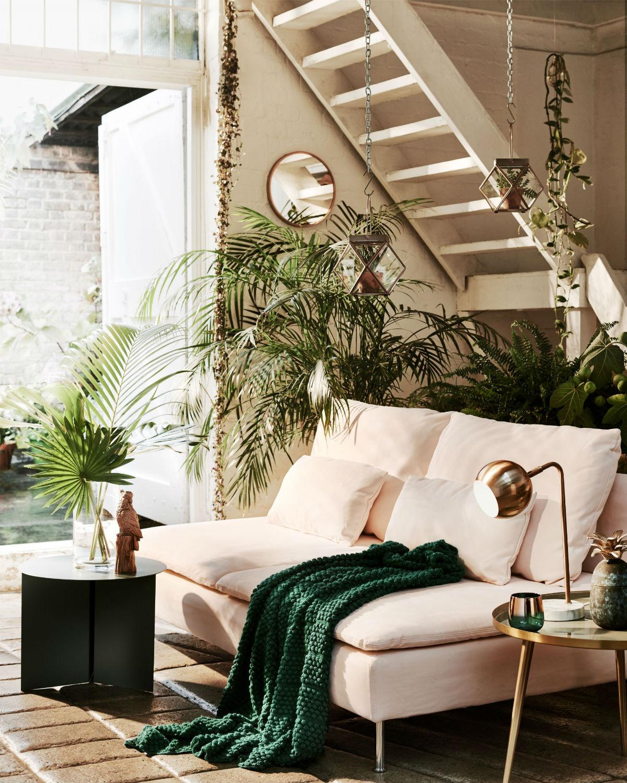 Как изменить интерьер, комнатные растения