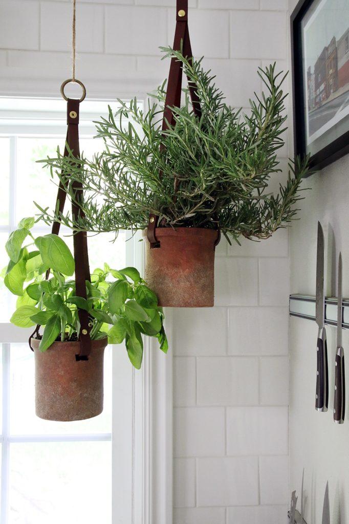 огород на кухне, на подоконнике